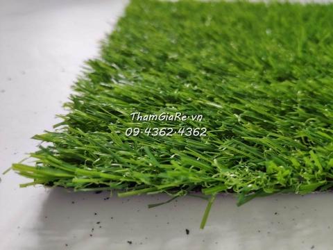 Thảm cỏ nhân tạo 2P loại dày