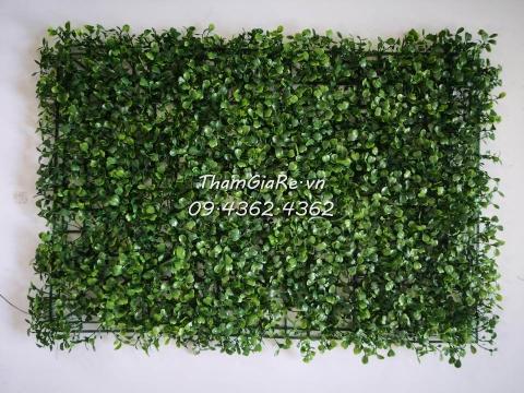 Thảm cỏ treo tường – Cỏ cải xoong